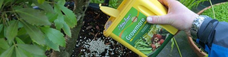 Удобрения садовых растений