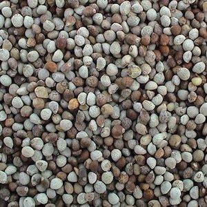 Семена периллы