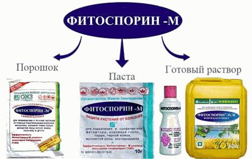 Виды препарата